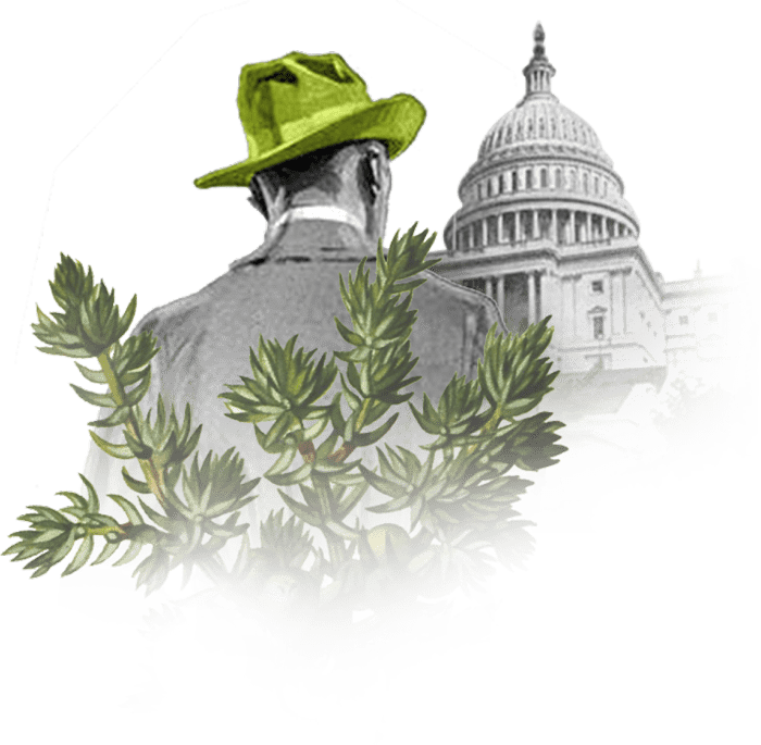 Man in the Green Hat stands before the United States Capitol Building